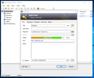 Created First Password Entry in KeePass Database by Ellis Benus with Floating Ax Technologies Web Design and Development